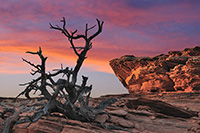 Coyote Buttes South - fotogaleria